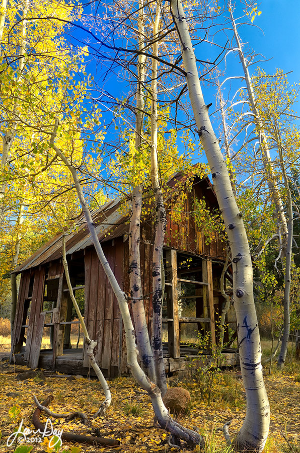 Photograph Cabin in the Sierra Woods by Jean Day Photography on 500px