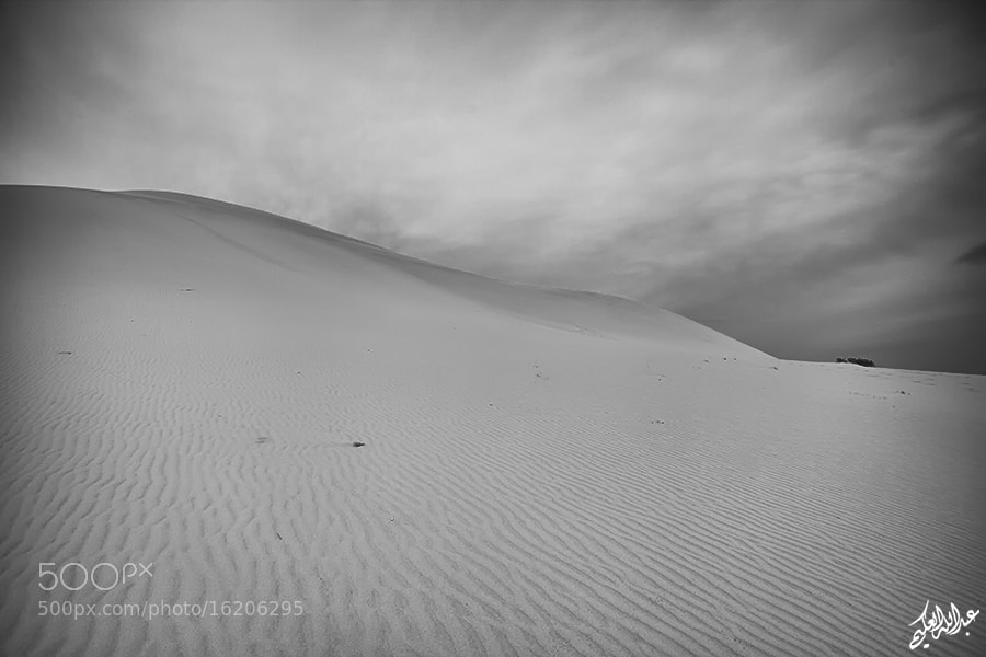 Photograph Sands  by Abdullah Al-Okime on 500px