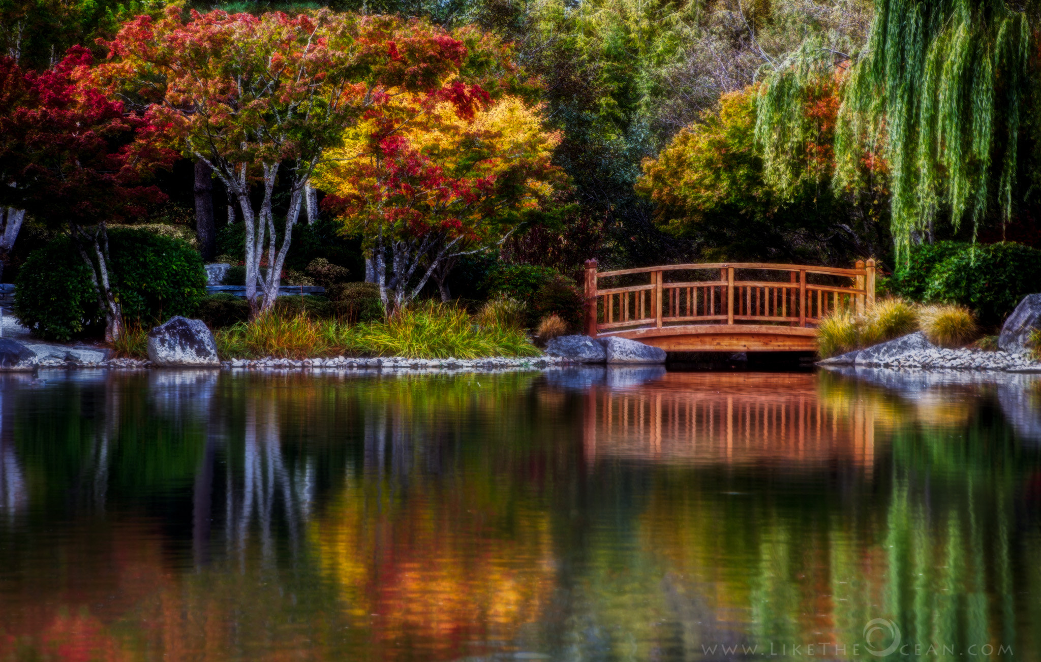 Photograph Fall colors with a zen twist by Sathya R on 500px