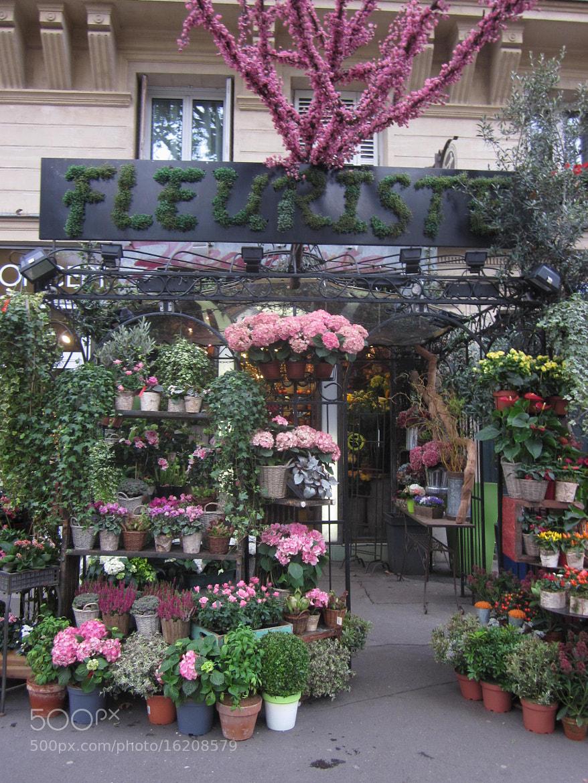 Photograph FLORES, PARIS. SEP. 2012 by maritza   BAEZ ACTA. on 500px