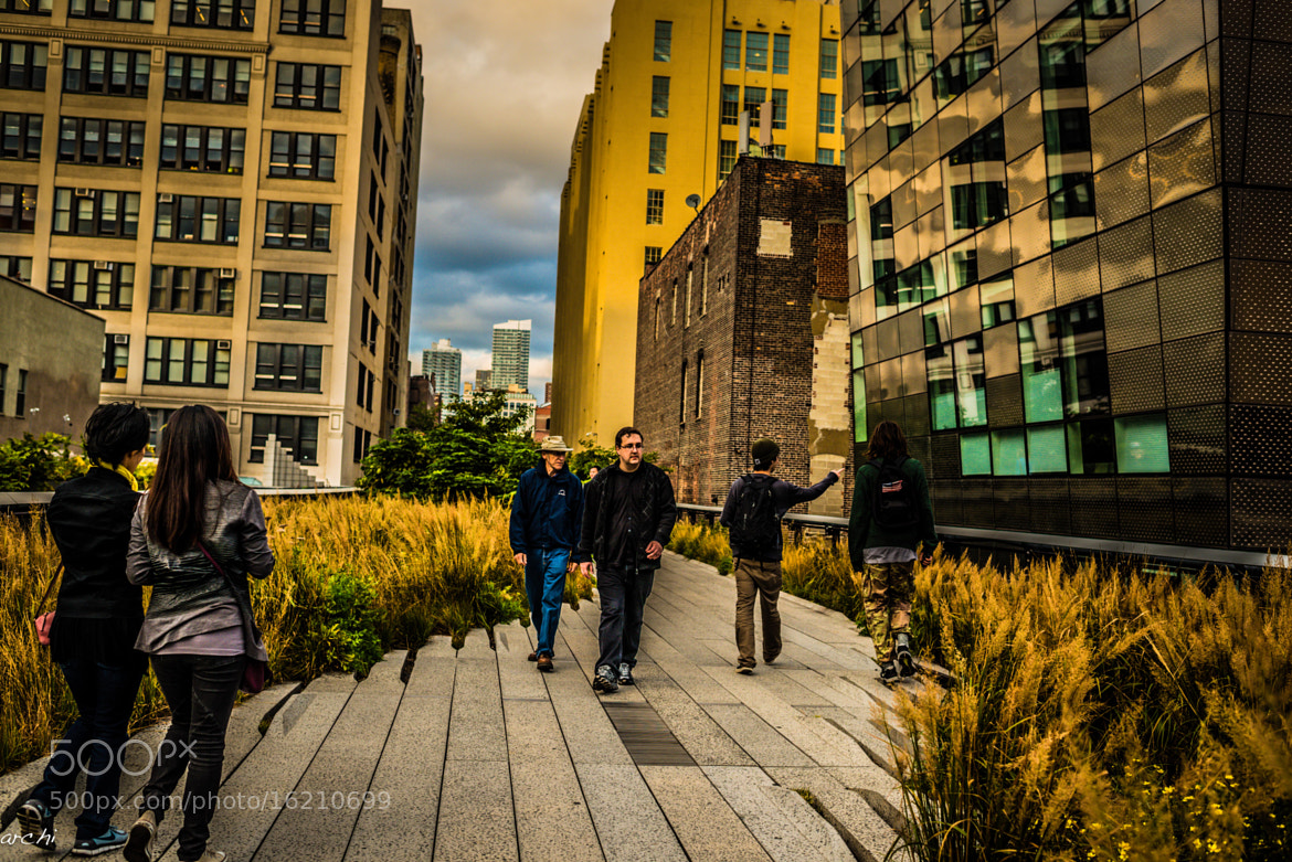 Photograph Highline Park - NYC by Archana Patchirajan on 500px