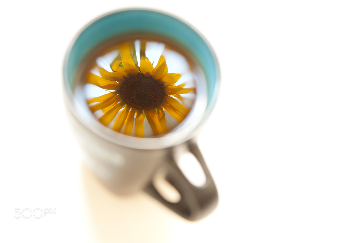 Photograph Reflection in a cup of tea by Alexandru Pais on 500px