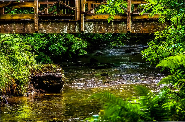 Photograph Water Under the Bridge by julian john on 500px