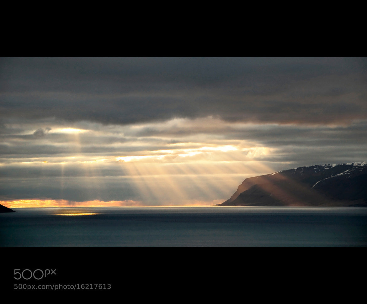 Photograph Orchestra of Light by Daniel Bosma on 500px