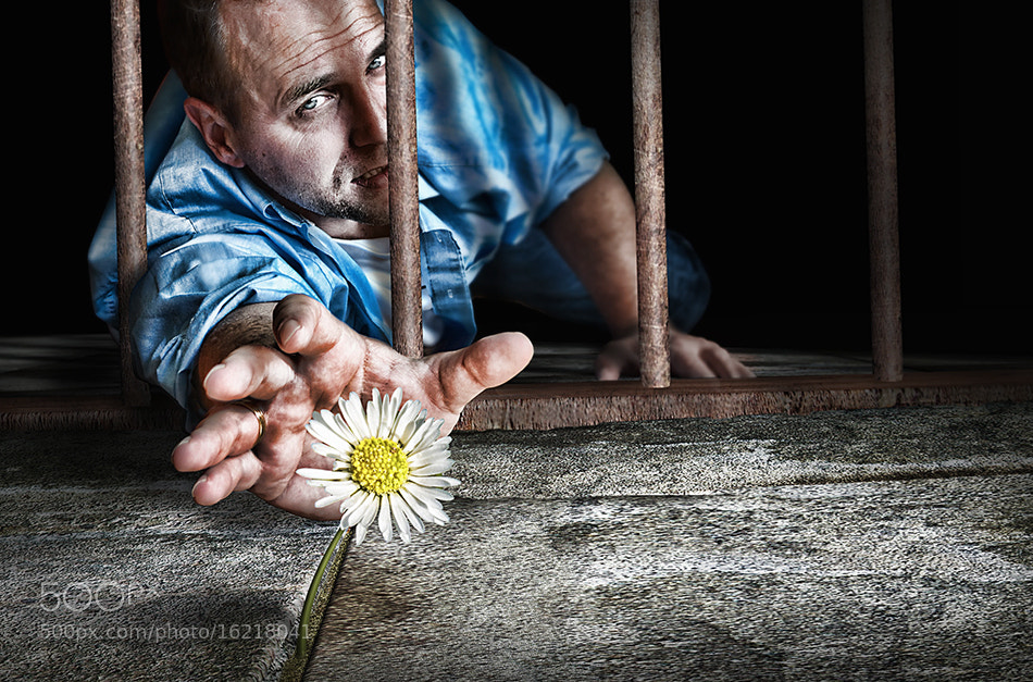 Photograph reaching for creativity by Adrian Sommeling on 500px