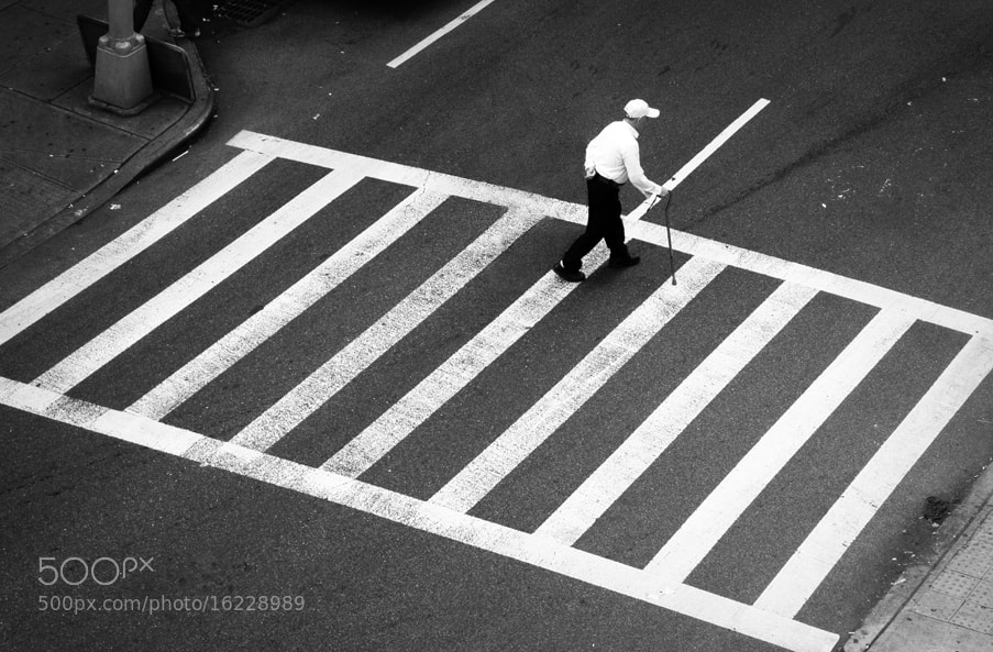 Photograph Crossing by Linda Wisdom on 500px