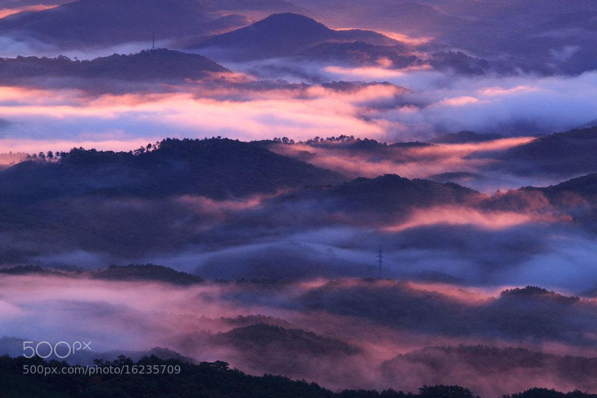 Photograph Above the Mist by makoto isa on 500px