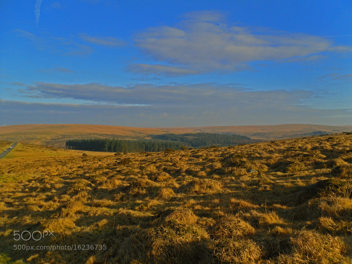 Photograph Dartmoor National Park by ML del S on 500px
