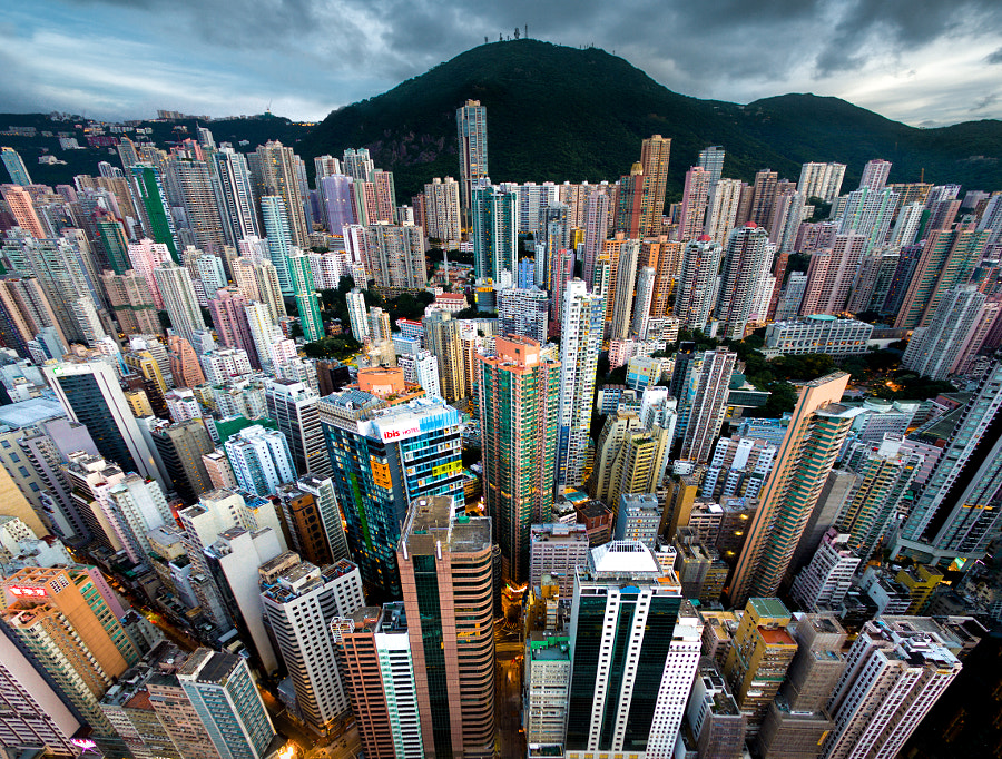 Urban Jungle #09 by Andy Yeung on 500px.com