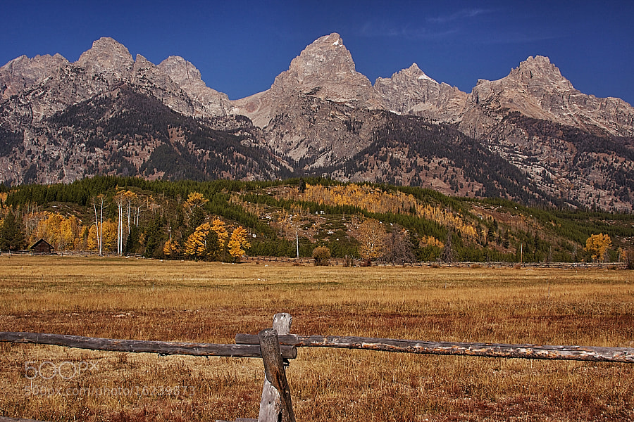 Photograph Teton Morning by Bill Bell on 500px