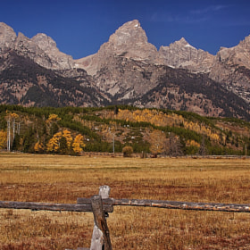 Teton Morning by Bill Bell (Dingus98)) on 500px.com