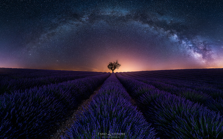 Purple Arch by Fabio Antenore on 500px.com