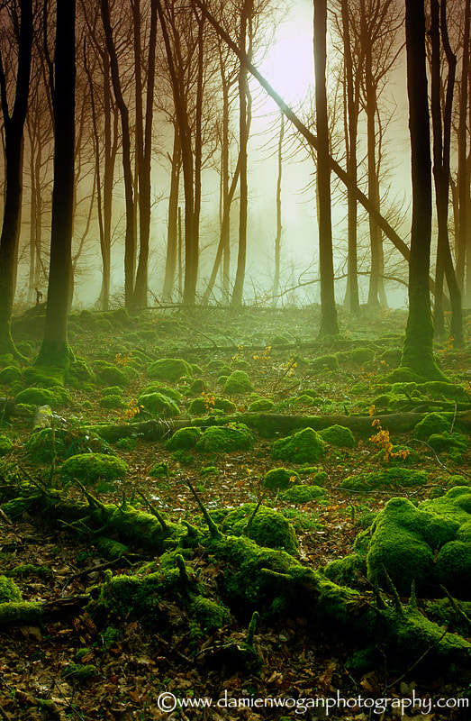 Photograph Lord of the Rings by Damien Wogan on 500px