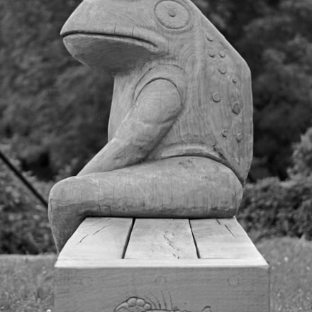 frog carving, Canon EOS 1100D, EF-S55-250mm f/4-5.6 IS STM