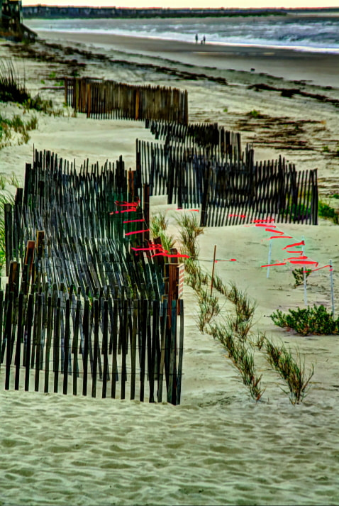 Photograph Dune Erosion Fences by Bill Gordon on 500px