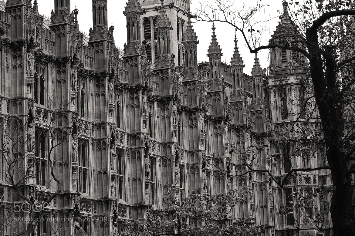 Photograph Houses of Parliament London by Magdalena Warmuz-Dent on 500px