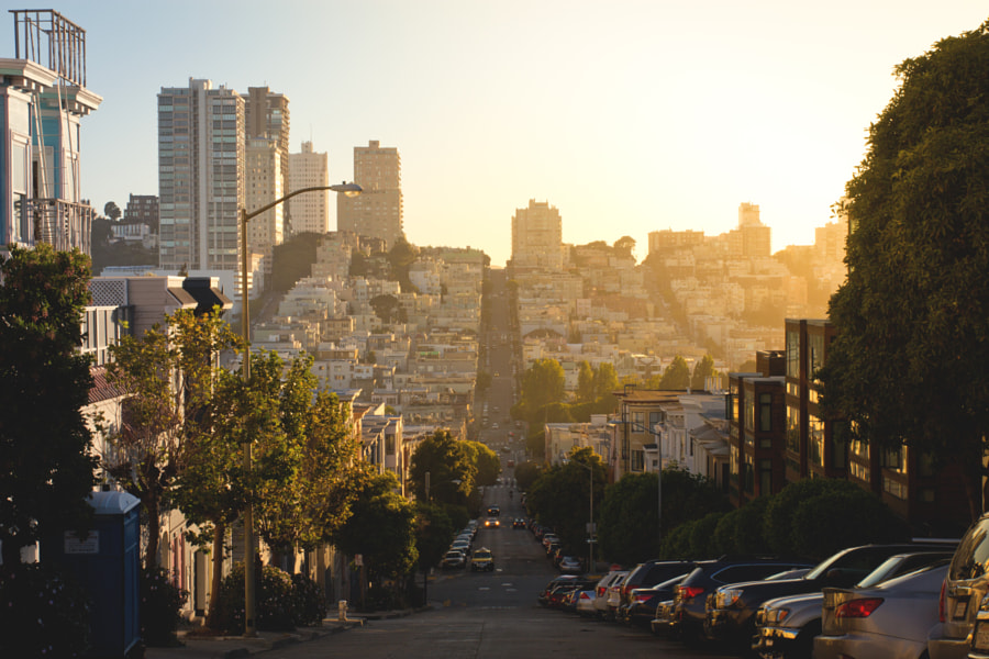 Telegraph Hill by sam wirch on 500px.com