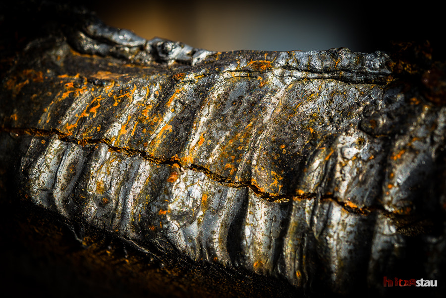 Piece of Rust by hitzestau on 500px.com