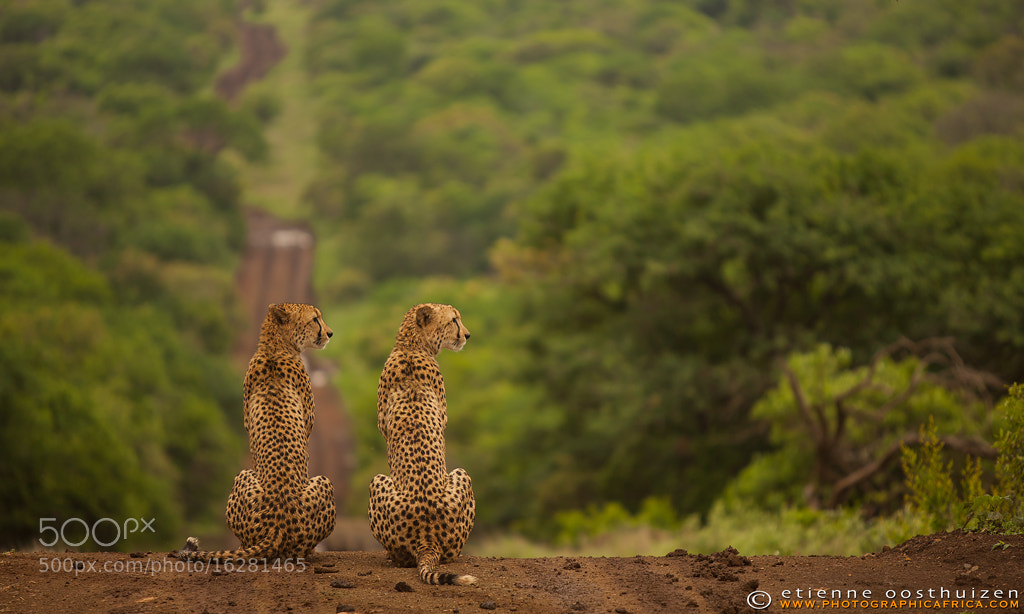 Photograph Muddy Roads by Etienne Oosthuizen on 500px