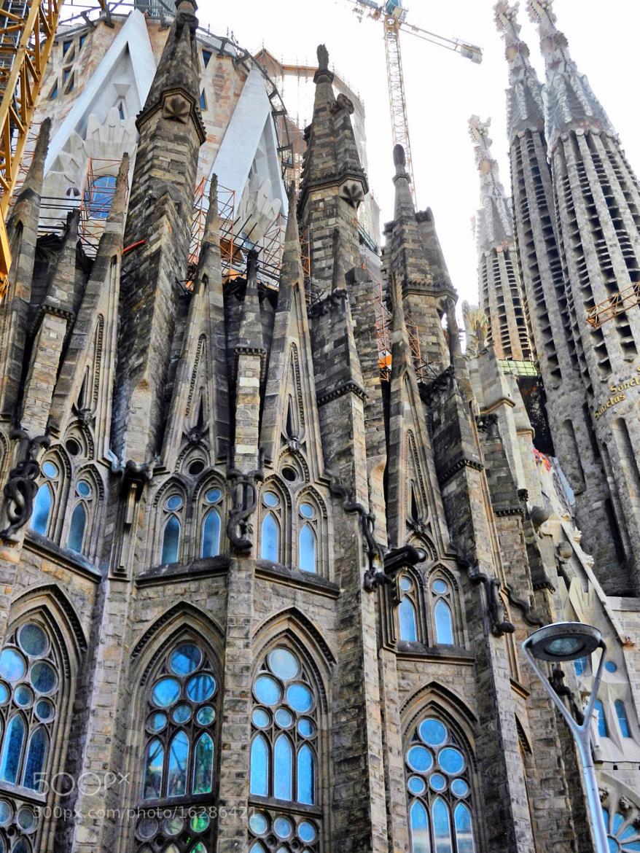 Photograph La Sagrada Familia by José Ramón Martínez Aleman on 500px