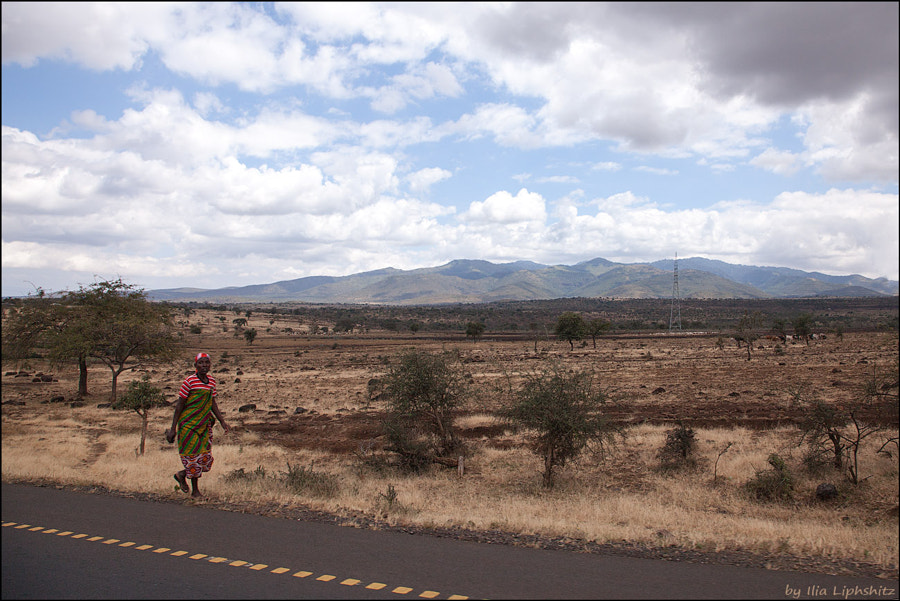 A way to Lake Manyara №3