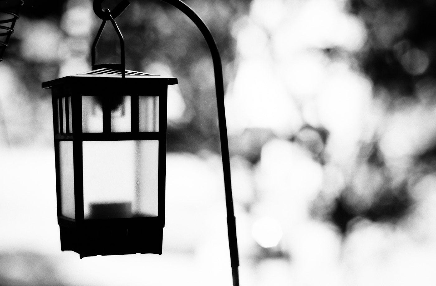 Photograph The Lantern by Mark Prince on 500px