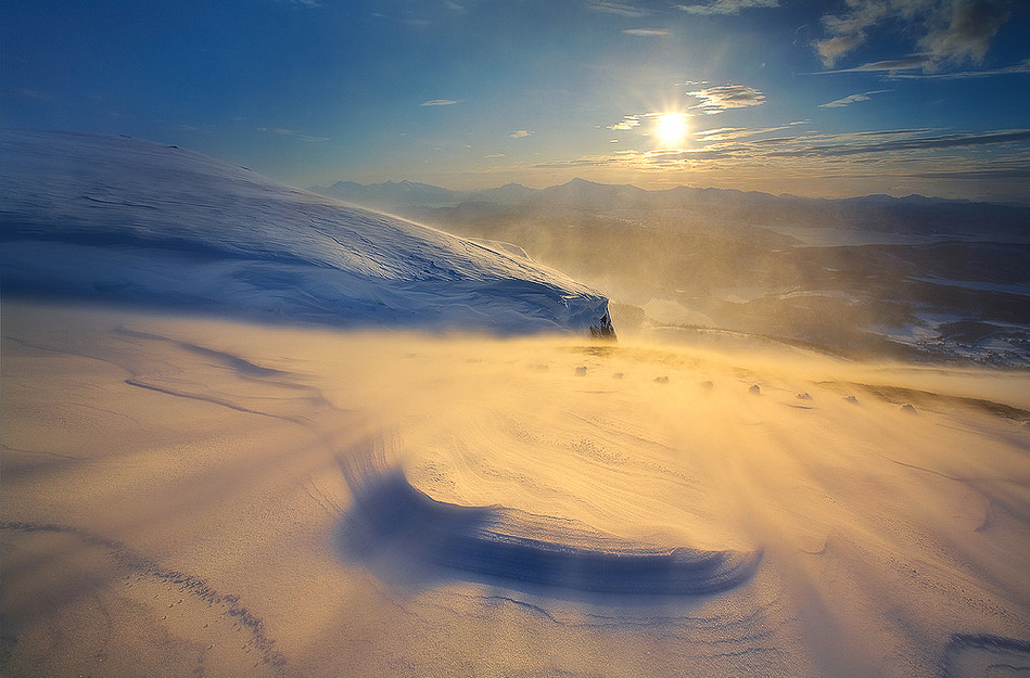 Photograph Blowin in the Wind by Arild Heitmann on 500px