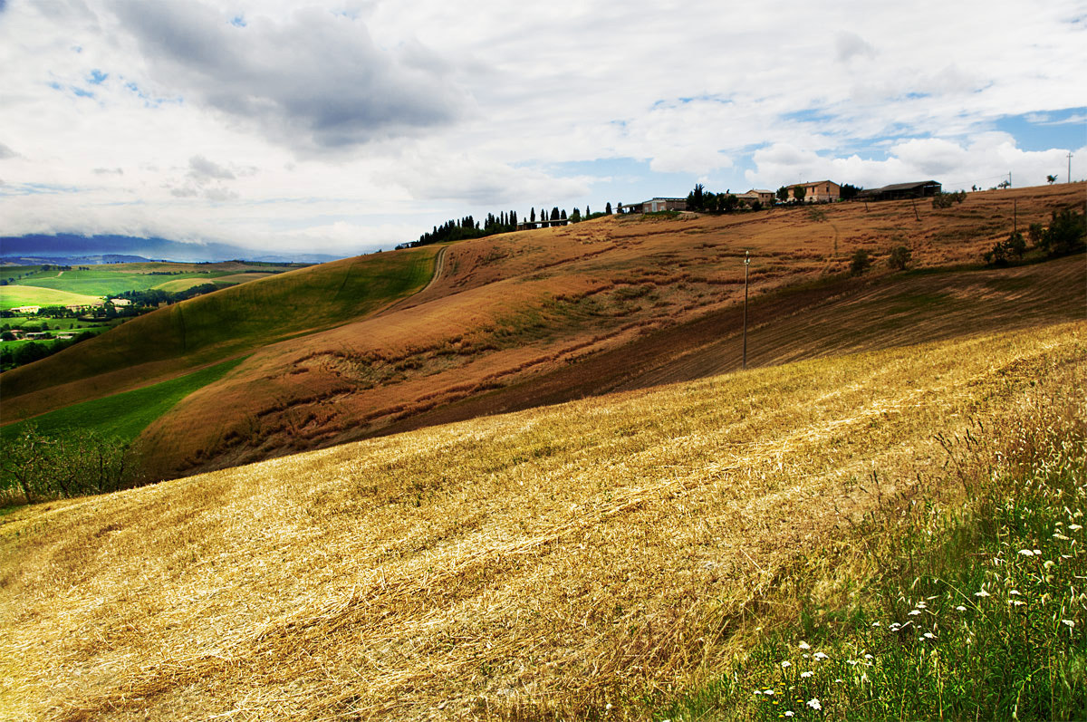Photograph Tuscany in June by claudio naboni on 500px