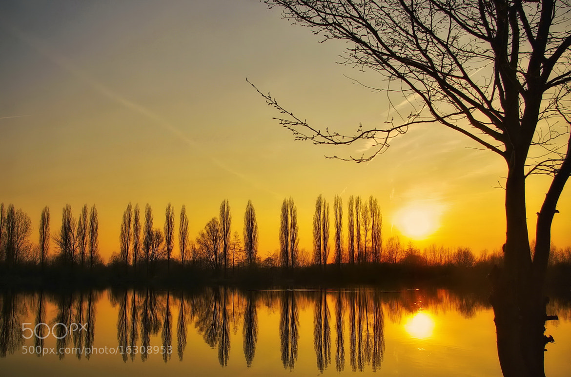 Photograph SUN ON THE LAKE by Kersten Studenski on 500px