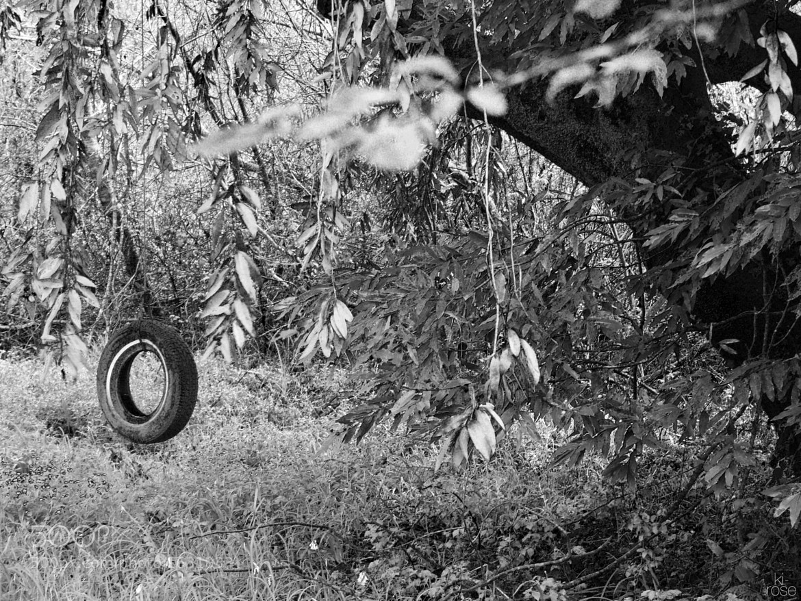 Photograph Tire Swing by ki - rose on 500px