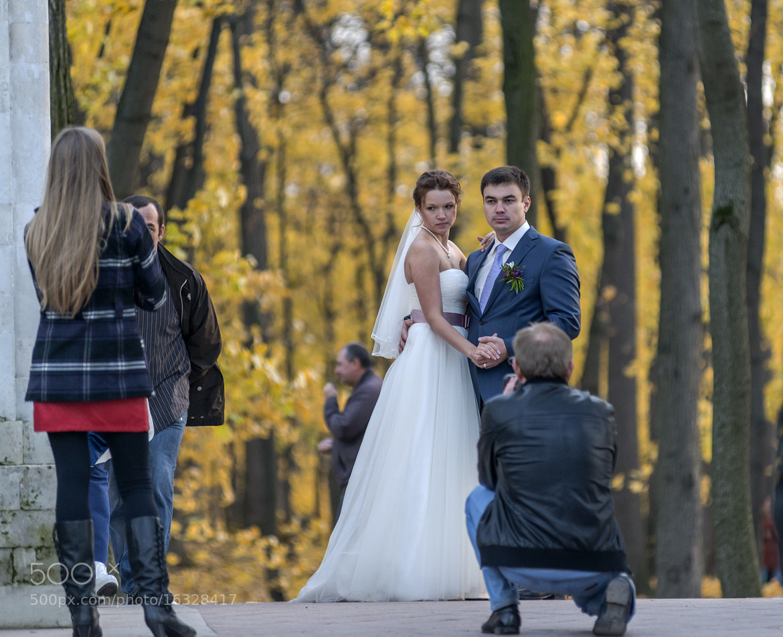 Photograph  Autumn in Tsaritsino. by Владимир Бесперстов on 500px