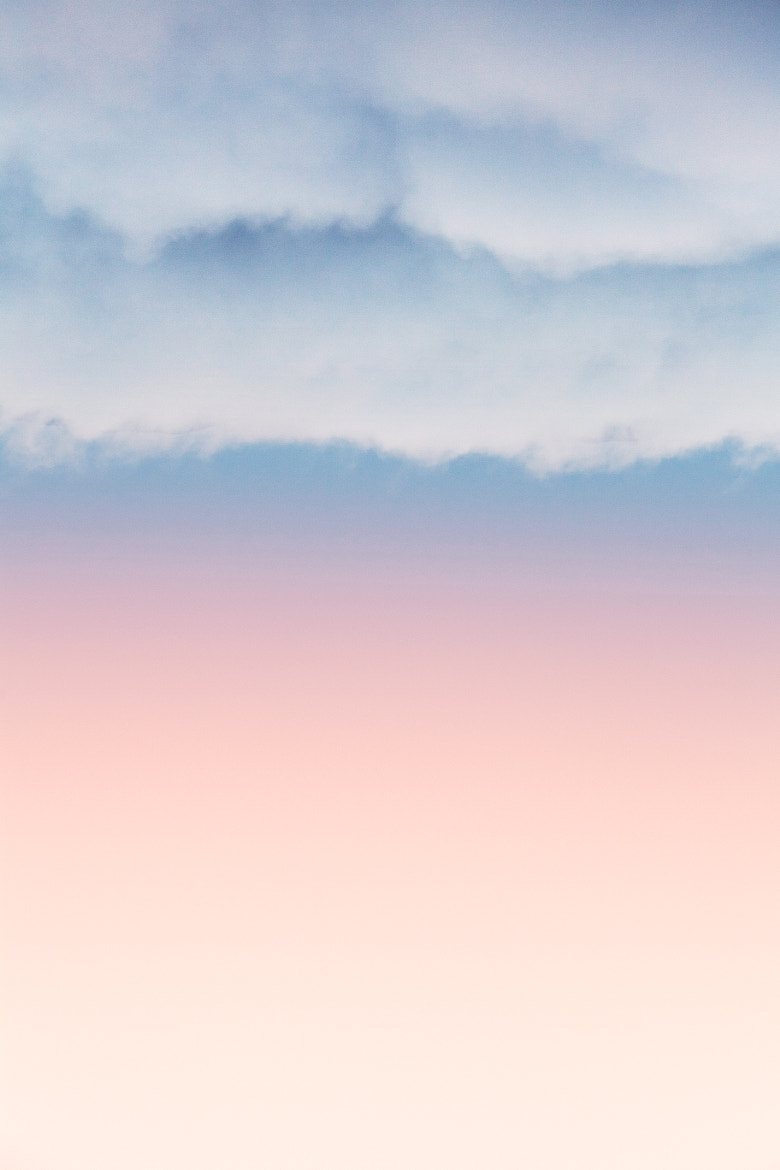 Photograph Cotton Candy by Tyler Brigham on 500px