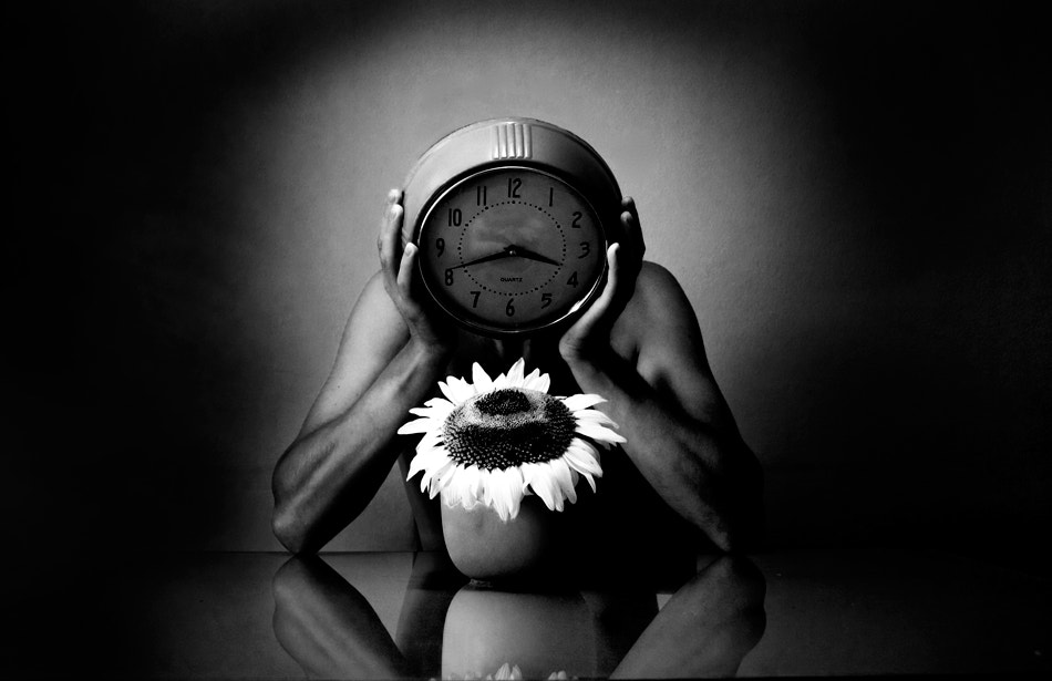 Photograph Watching The Sunflower by Mario Pucic on 500px
