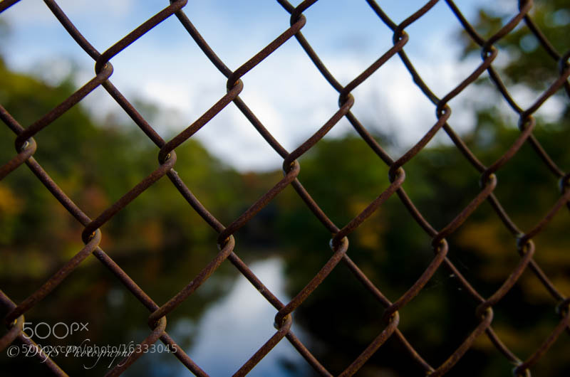 Caged in...