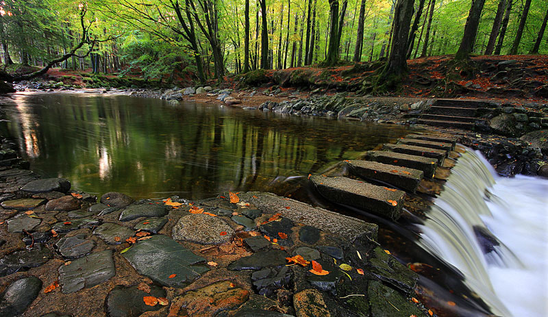 Photograph Stepping Stones by Brian Curran on 500px
