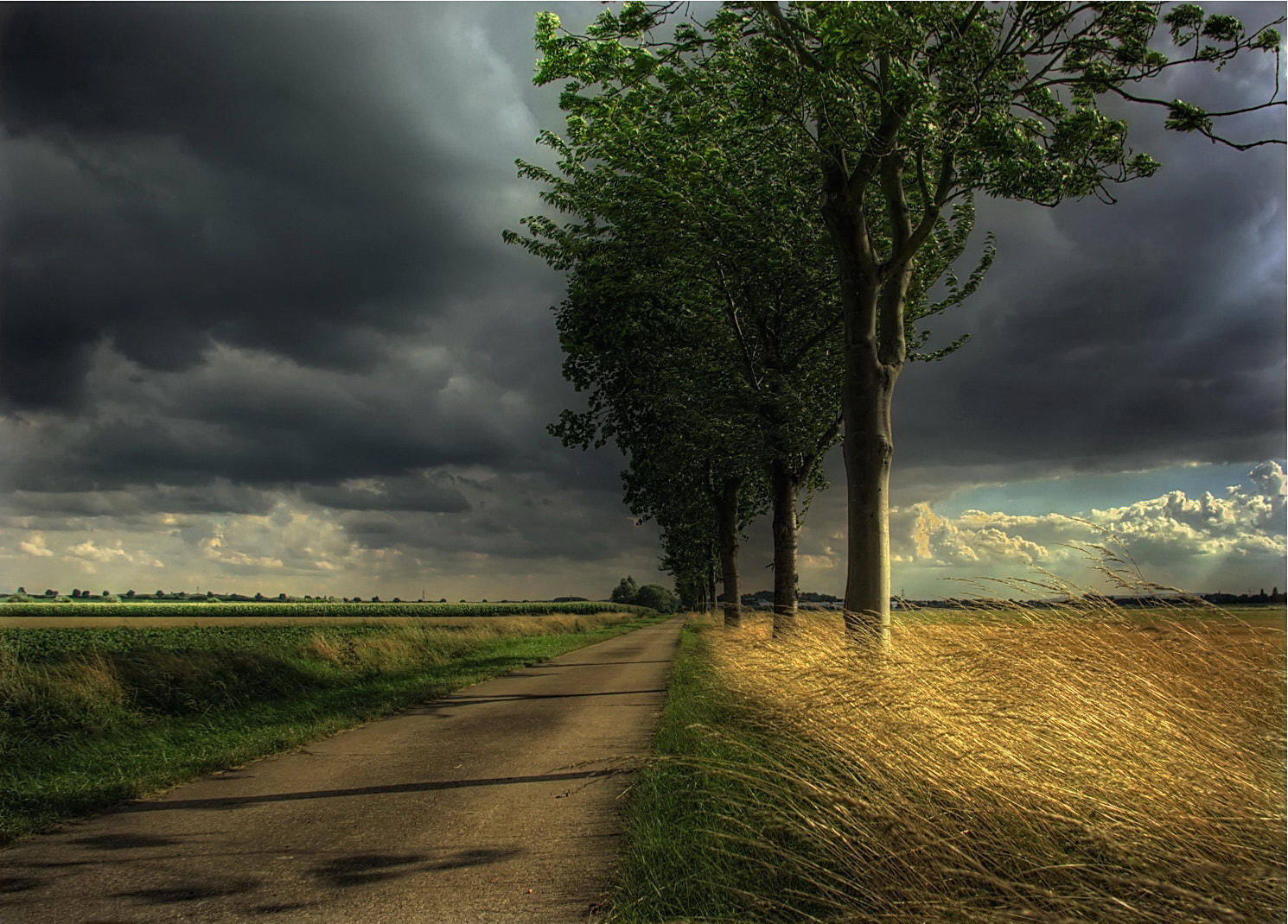 Photograph LIGHT IN THE WIND by Kersten Studenski on 500px