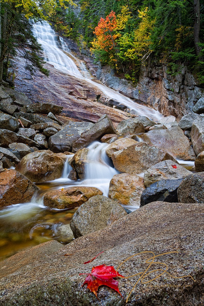 Photograph Ripley Falls And Red Maple Leaf by Jeff Sinon on 500px