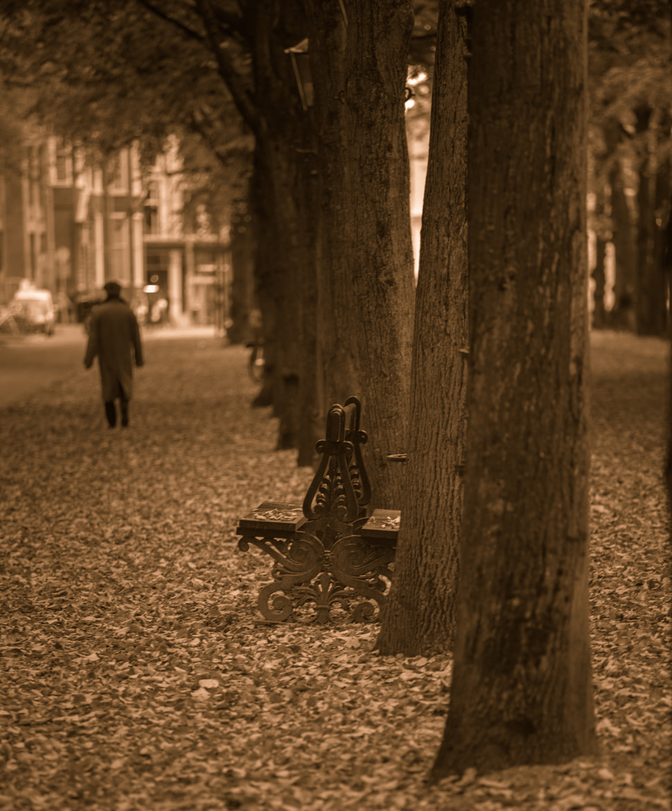Photograph Odd Bench Out by Christopher A. Dominic on 500px