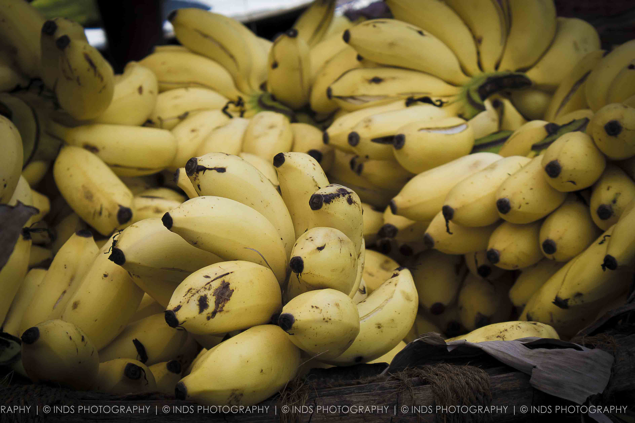 Photograph Banana's by the road side by Immesh Nanthakumar on 500px