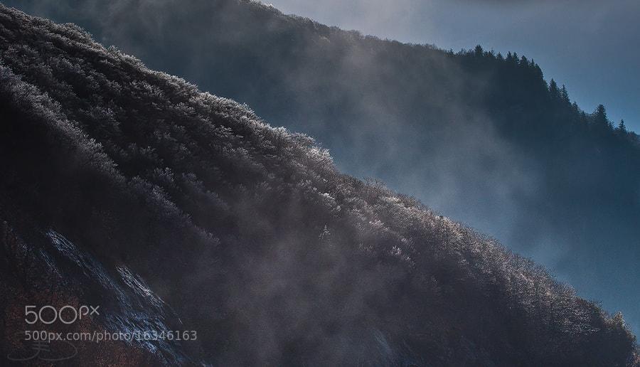 Photograph Shadows by Joseph Balcken on 500px
