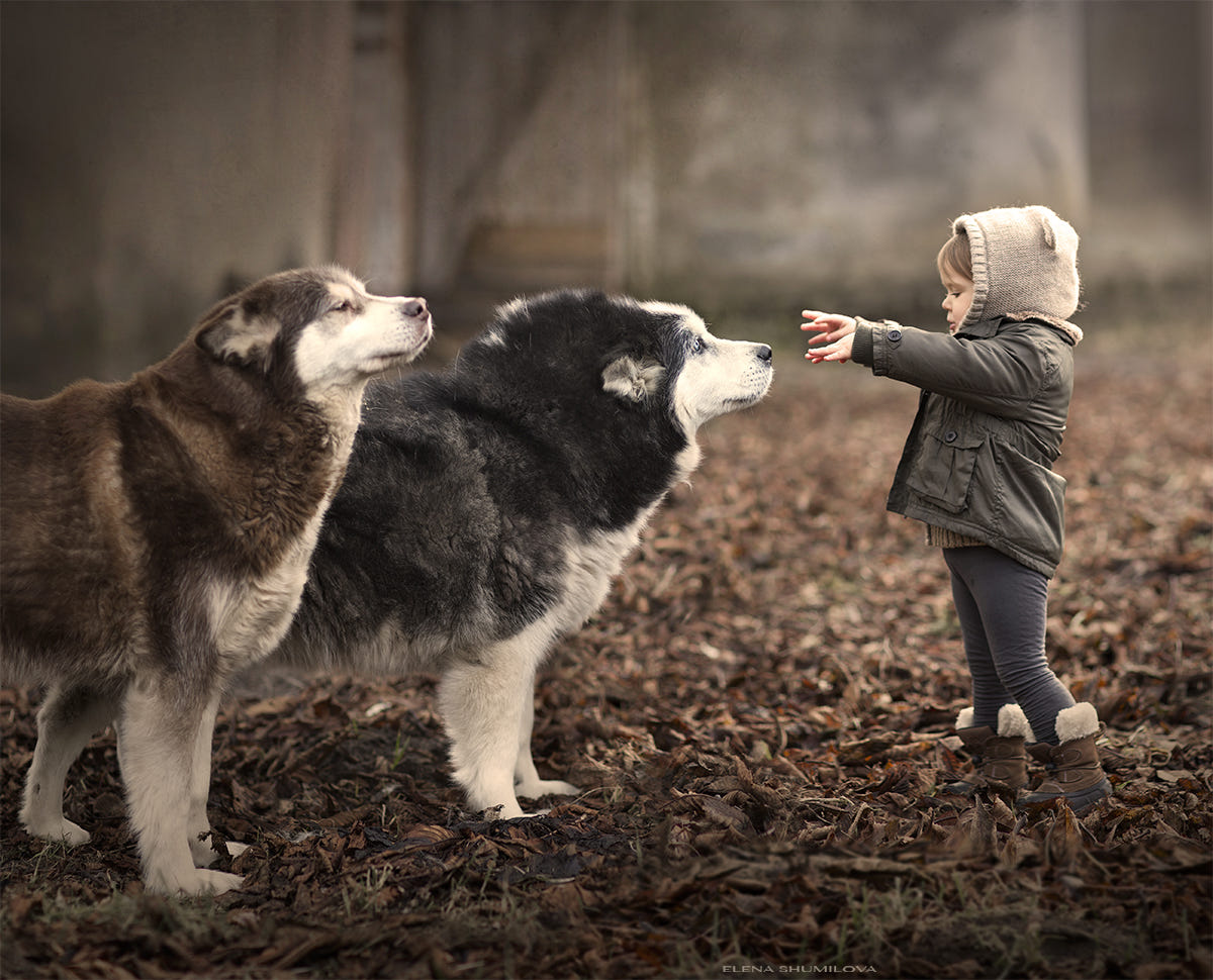Salinka & her dogs.. by Elena Shumilova on 500px