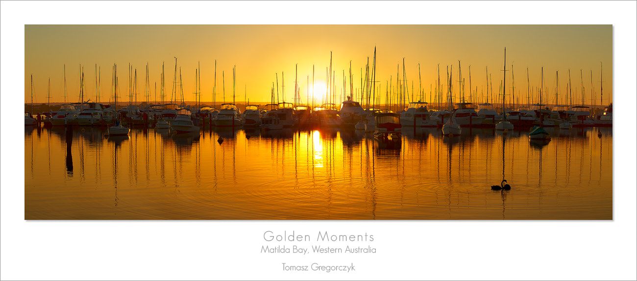 Photograph Golden Moments by Tomasz Gregorczyk on 500px
