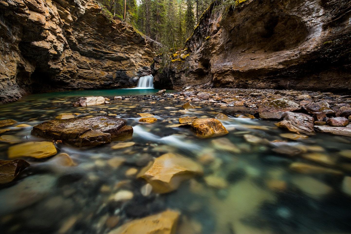 Photograph Johnston Canyon by James McGregor on 500px