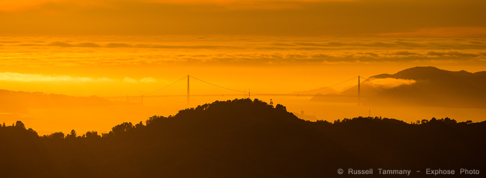 Photograph Golden Golden Gate by Russell Tammany on 500px