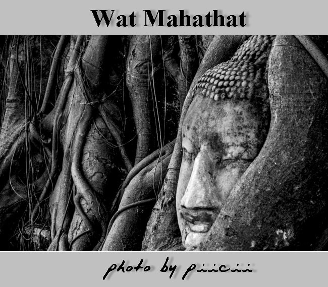 Photograph Wat Mahathat @ Ayutthaya by piicii traveler on 500px