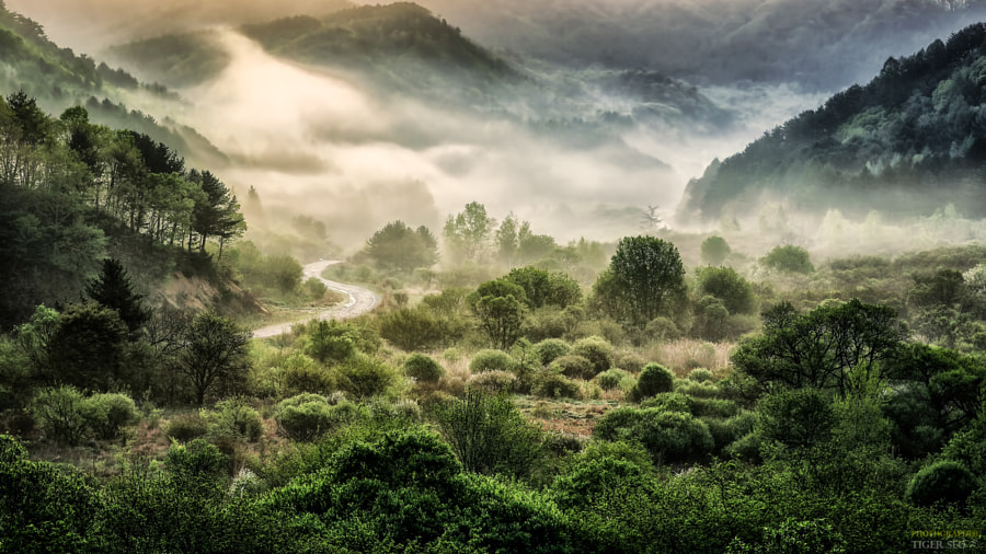 Entrance by Tiger Seo on 500px.com