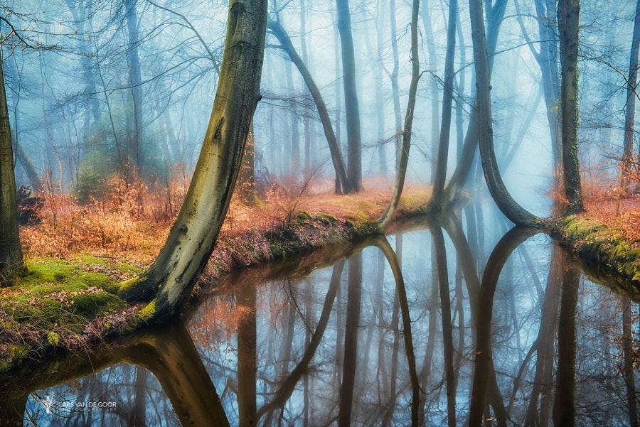 Bending over the River by Lars van de Goor on 500px.com
