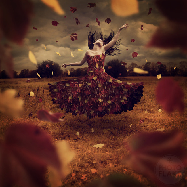 Photograph dance of leaves by photoflake . on 500px