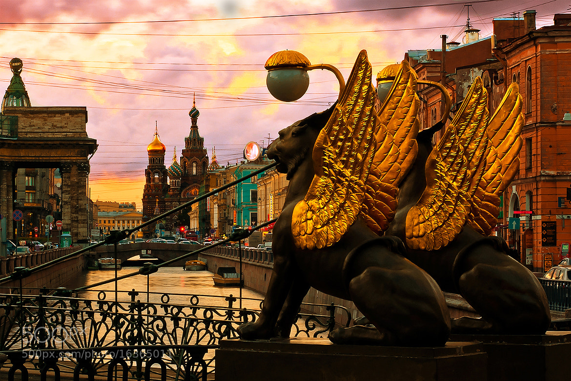 Photograph St. Petersburg, Russian - Griffin Bridge by Lars C. on 500px