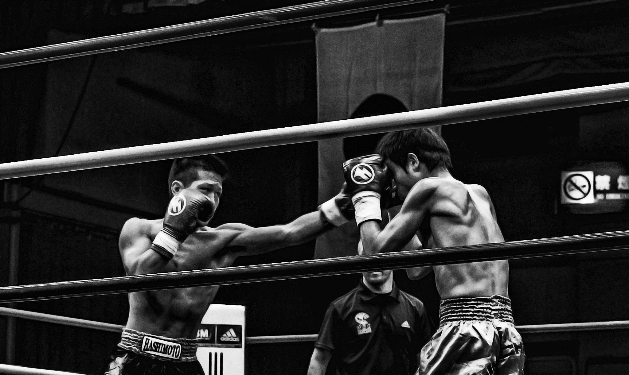 Photograph In the Ring 4 by Mario Acevedo on 500px